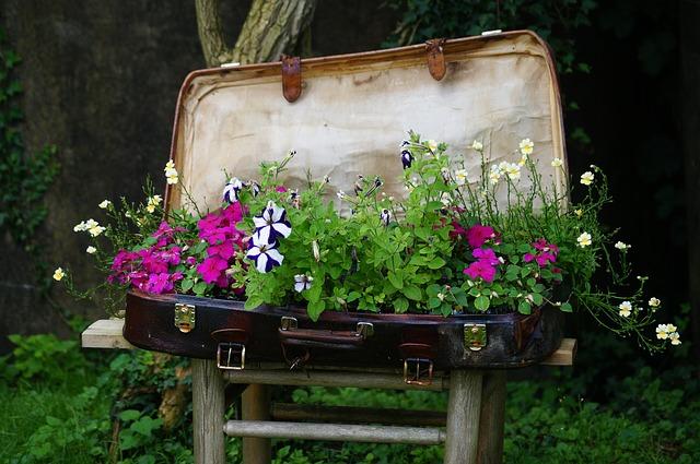 kytky v kufru