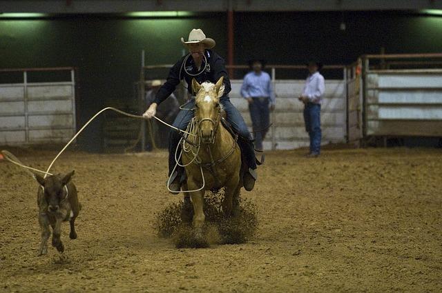 Koňské rodeo